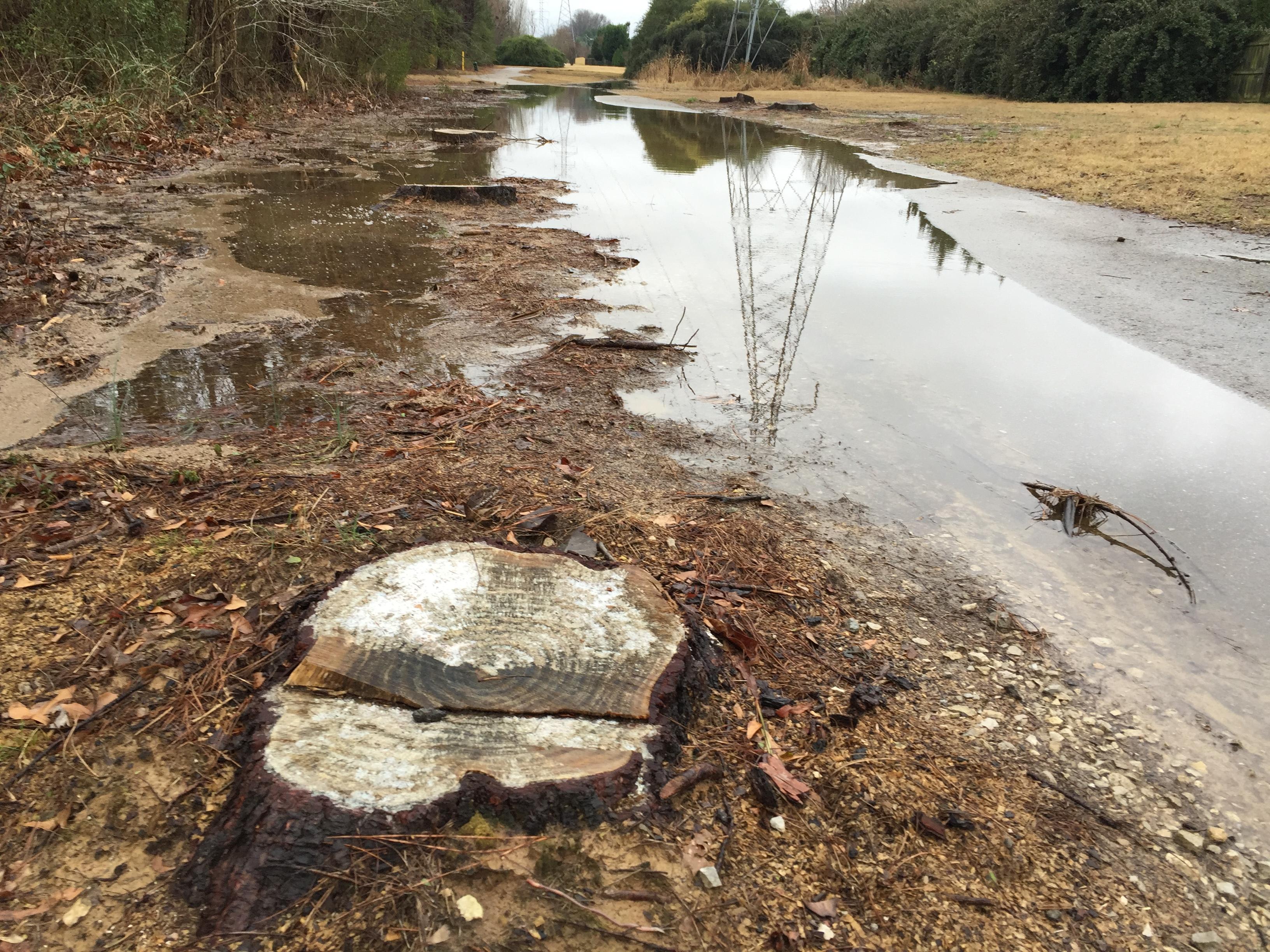 germantown tn running trail flood