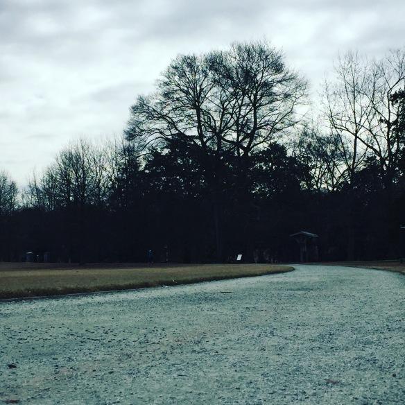 Piedmont Park oval atlanta
